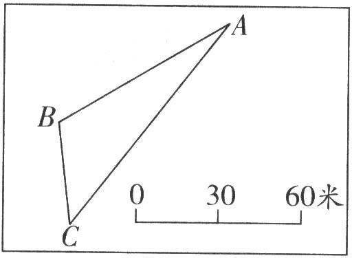 小学六年级数学总复习题库(操作、图形)【人教版】