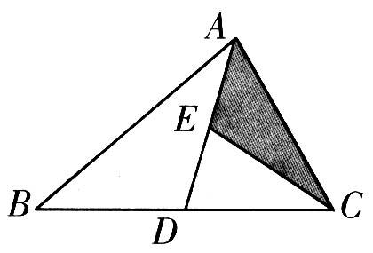 六年级下册数学操作、图形题总复习题